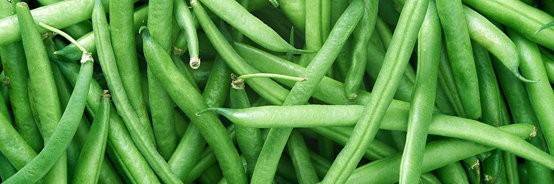 Grüne Bohnen – Die 7 gefährlichsten Lebensmittel der Welt