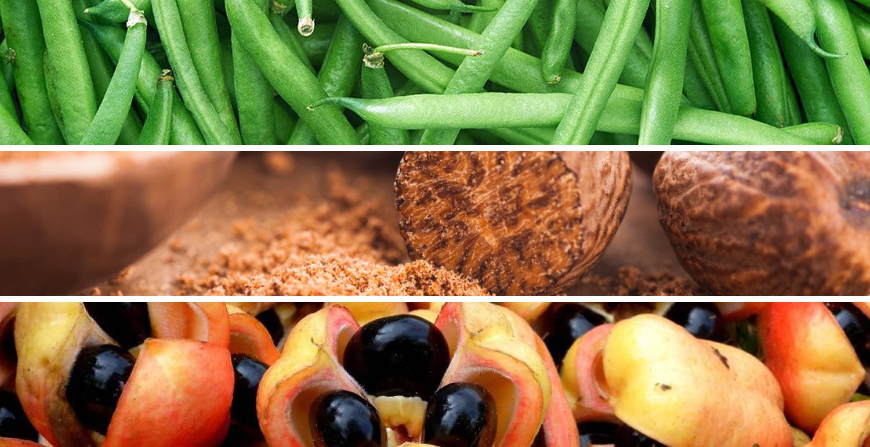 Die 7 gefährlichsten Lebensmittel der Welt