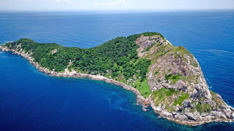 Die Schlangeninsel Ilha da Queimada Grande